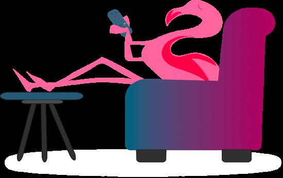 tv-flamingo